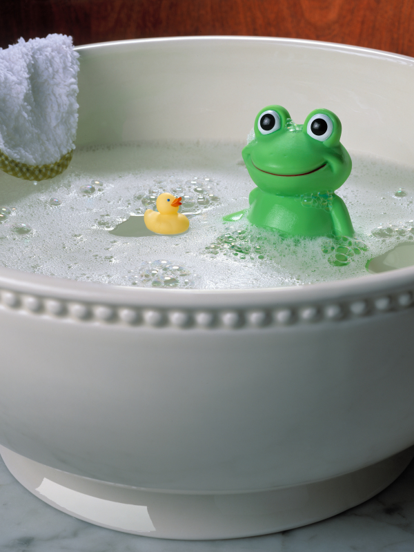 Frog and Duck in Bath